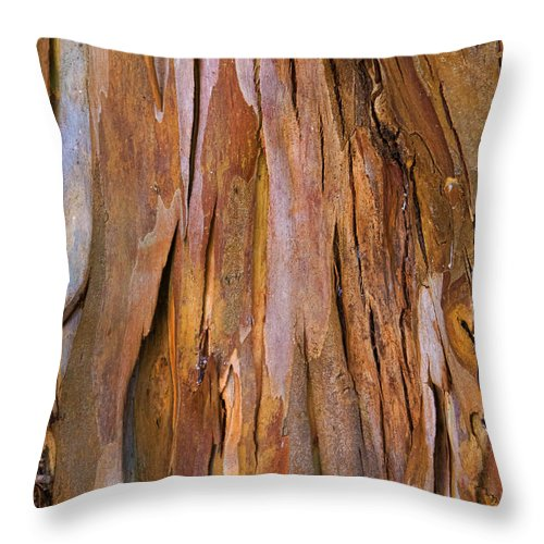 Rhytidome Throw Pillow featuring the photograph Protection by Gillian Singleton