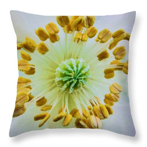 Psychedelic Poppy Throw Pillow featuring the photograph Psychedelic Poppy by TK Goforth