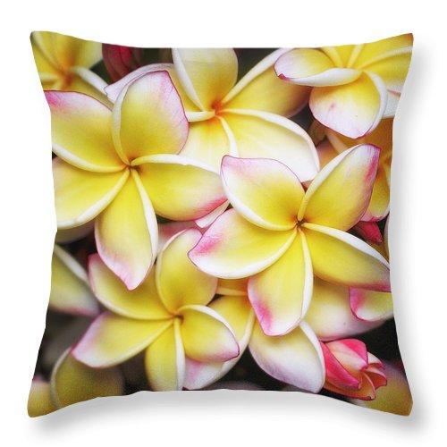 Plumeria Throw Pillow featuring the photograph Pua Melia by Jade Moon