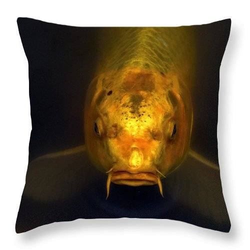 Koi Throw Pillow featuring the photograph Pucker Up by Calazone's Flics
