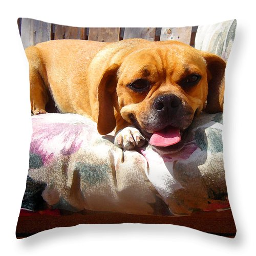 Animal Throw Pillow featuring the painting Puggle Lounging by Amy Vangsgard