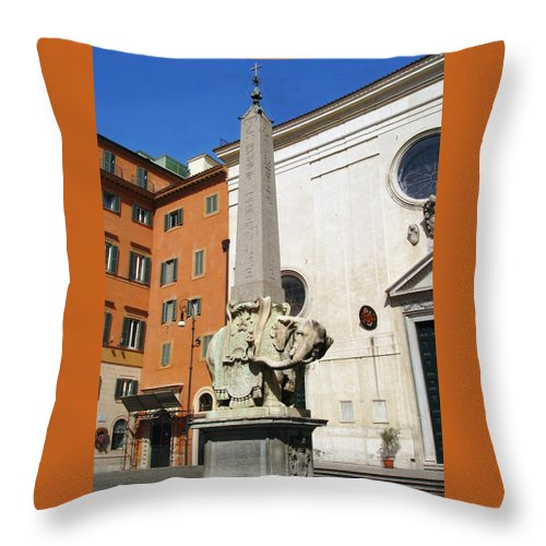 Pulcino Della Minerva Throw Pillow featuring the photograph Pulcino Della Minerva by Ellen Henneke