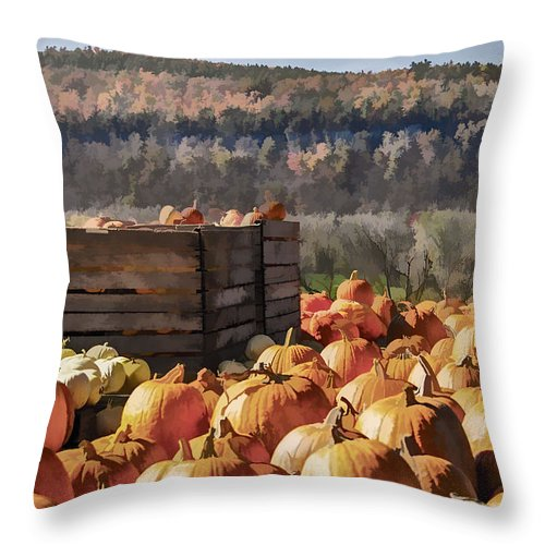 Pumpkin Throw Pillow featuring the photograph Pumpkin Harvest by Ray Summers Photography