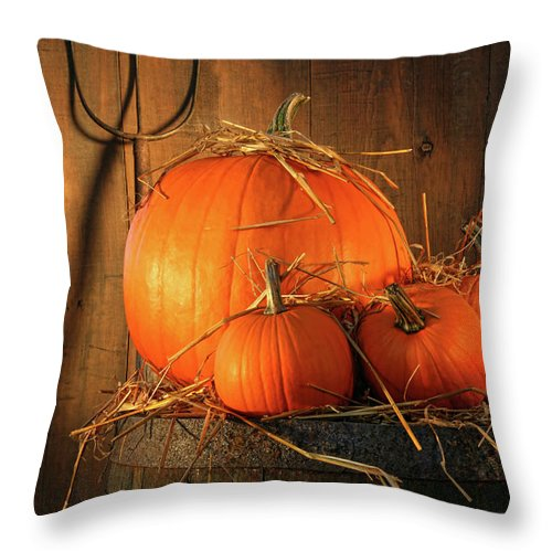 Agriculture Throw Pillow featuring the photograph Pumpkins On Wine Barrel by Sandra Cunningham