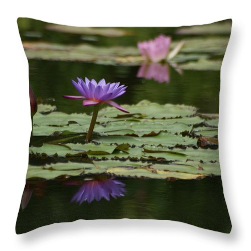 Purple Blossoms Throw Pillow featuring the photograph Purple Blossoms Floating by Patricia Twardzik
