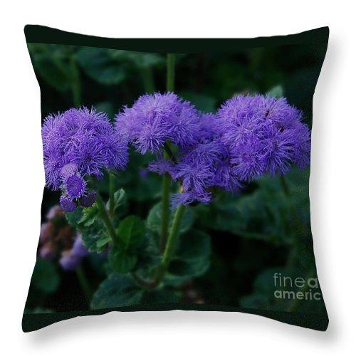 Crisp Throw Pillow featuring the photograph Purple by Donna Cavanaugh