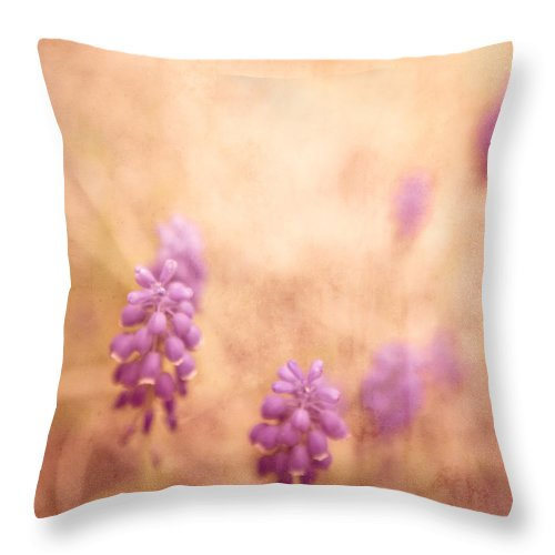 Purple Throw Pillow featuring the photograph Purple Dreamy by Debi Bishop