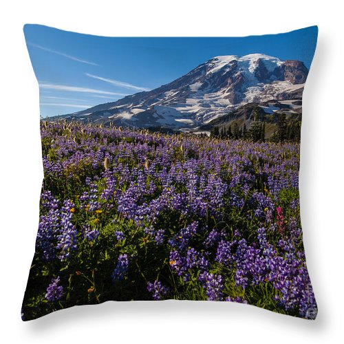 Rainier Throw Pillow featuring the photograph Purple Fields Forever And Ever by Mike Reid
