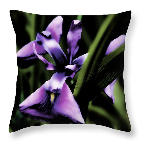 Flower Throw Pillow featuring the photograph Purple Flower by David Patterson