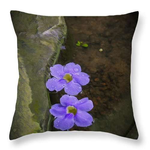 Zen Throw Pillow featuring the photograph Purple Flowers by Patricia Hofmeester