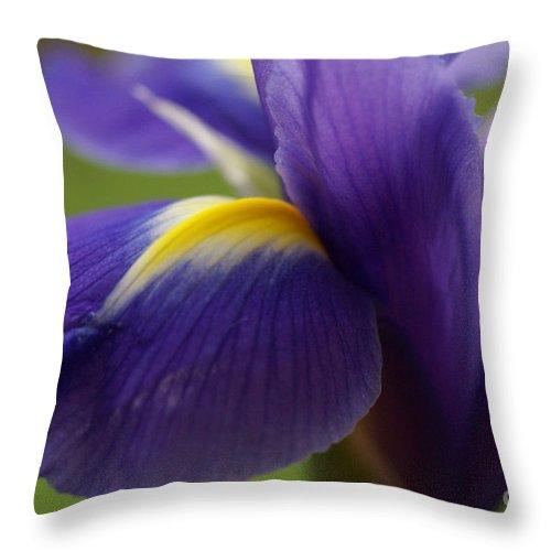 Purple Throw Pillow featuring the photograph Purple Iris 8 by Carol Lynch