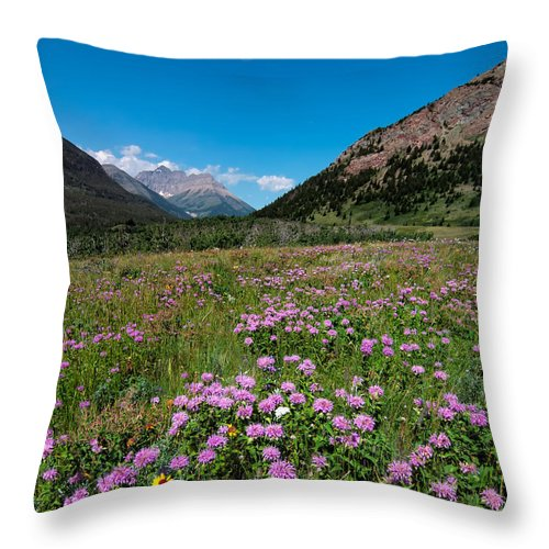 Alberta Throw Pillow featuring the photograph Purple Mountain Flowers by James Wheeler