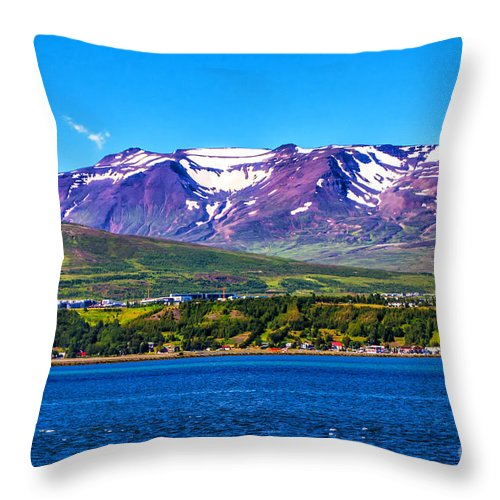 Landscape Throw Pillow featuring the photograph Purple Mountain Majesty by Roberta Bragan