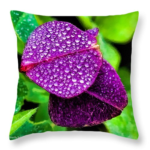 Clover Canvas Print Throw Pillow featuring the photograph Purple Shimmer by Lucy VanSwearingen