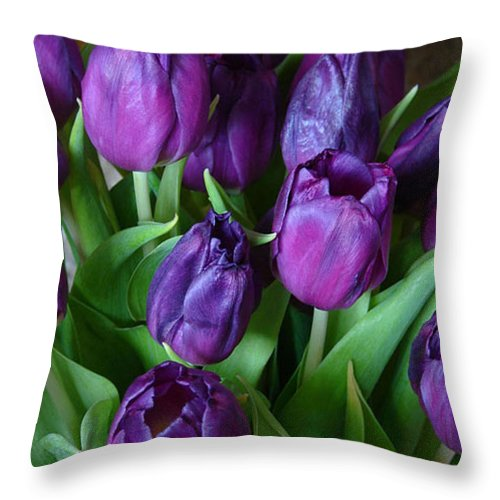 Purple Throw Pillow featuring the photograph Purple Tulips by Carol Lynch