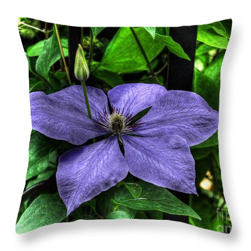 Clematis Throw Pillow featuring the photograph Pushing Through by Chris Fleming