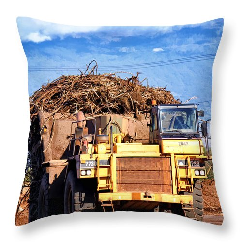 Hawaii Throw Pillow featuring the photograph Puunene Mill 15 by Dawn Eshelman