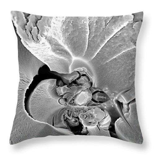Quaker Throw Pillow featuring the digital art Quaker by Dolores Kaufman