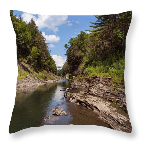 Tree Throw Pillow featuring the photograph Quechee Gorge by John M Bailey