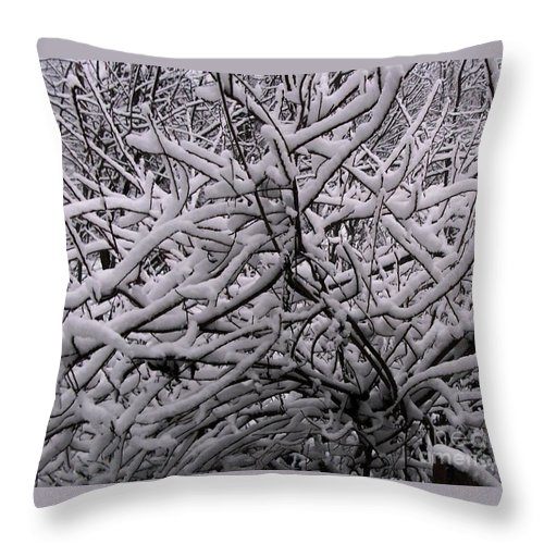 Photo Of Snow Throw Pillow featuring the photograph Quiet Beauty by David Neace