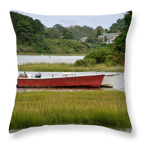 Water Throw Pillow featuring the photograph Quiet Moment by Ira Shander