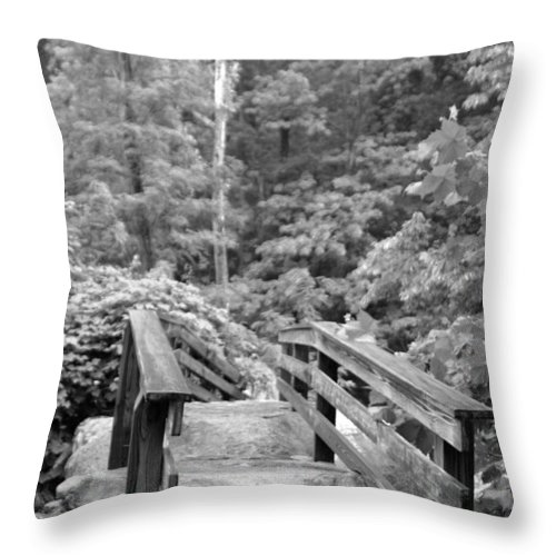 Bridge Throw Pillow featuring the photograph Quiet Walk by Wayne White