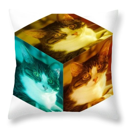 Cat Throw Pillow featuring the digital art R U Square by PainterArtist FIN