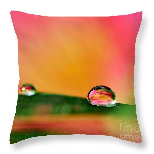 Photography Throw Pillow featuring the photograph Rain Drops by Kaye Menner