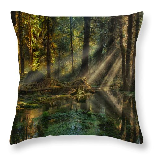 Rain Forest Throw Pillow featuring the photograph Rain Forest Sunbeams by Mary Jo Allen