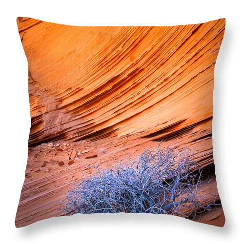 America Throw Pillow featuring the photograph Rainbow Rocks Dead Bush #1 by Inge Johnsson