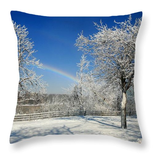 Niagara Falls Throw Pillow featuring the photograph Rainbows Of Ice by Eric Swan