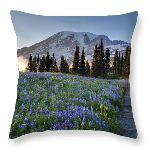 Rainier Throw Pillow featuring the photograph Rainier Evening Lupine Fields by Mike Reid