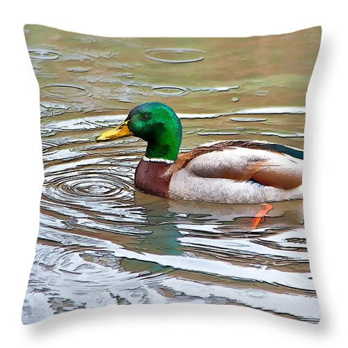 Dan Sabin Throw Pillow featuring the photograph Rainy Day Mallard by Dan Sabin