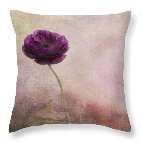 Minimalistic Throw Pillow featuring the photograph Ranuncula by Bonnie Bruno