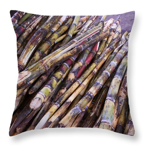 Raw Cane Throw Pillow featuring the photograph Raw Cane by Allan Morrison