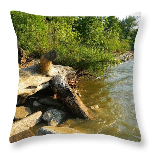 Driftwood Throw Pillow featuring the photograph Raw Lake Erie Shore by Kathy Barney