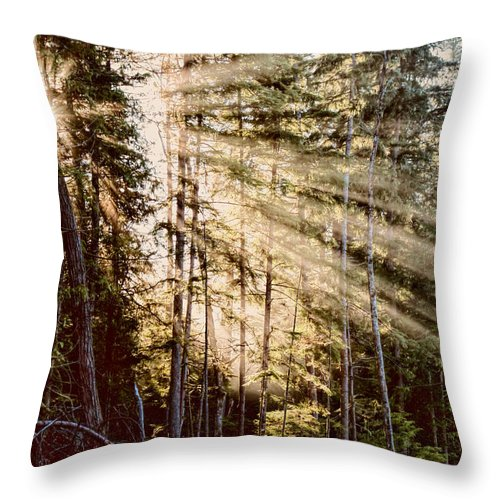 Sun Throw Pillow featuring the photograph Rays Of Hope by Peggy Collins