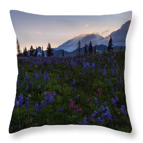 Sunbeams Throw Pillow featuring the photograph Rays Over Rainier by Mike Dawson