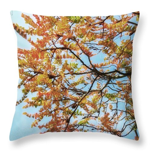 Tree Throw Pillow featuring the photograph Reaching Autumn by Jamie Johnson