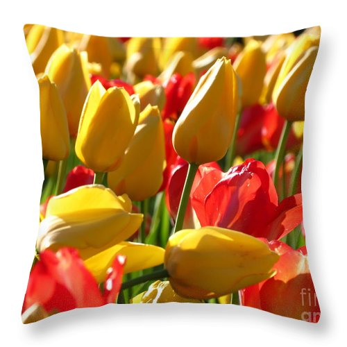 Tulips Throw Pillow featuring the photograph Reaching For The Light by Anita Adams
