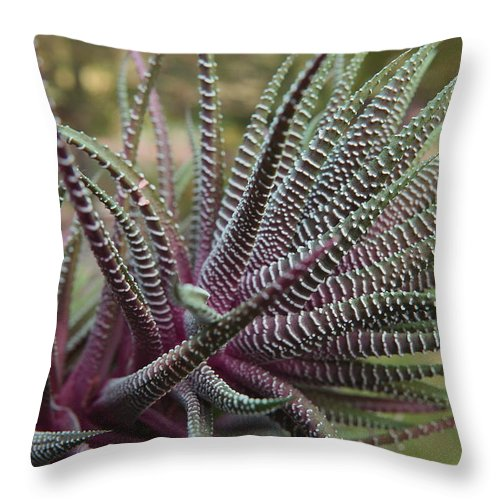Reaching Throw Pillow featuring the photograph Reaching by Neal Eslinger