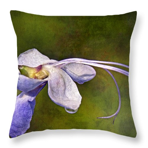 Flower Throw Pillow featuring the photograph Reaching Out by Theo O'Connor