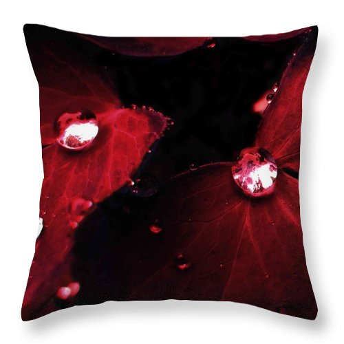 Leaf Throw Pillow featuring the photograph red by Aza Johnson