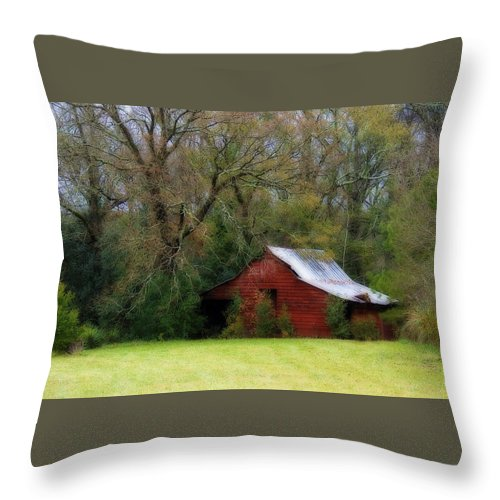 Red Barn Throw Pillow featuring the photograph Red Barn by Steven Richardson