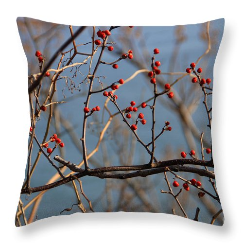 Red Berries Throw Pillow featuring the photograph Red Berries 2 by Michael Mooney
