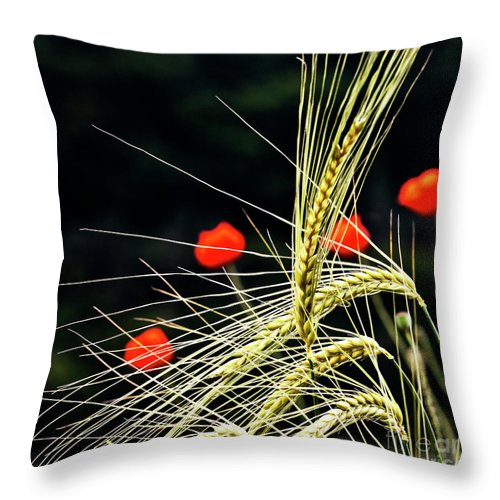 Red Corn Poppies Throw Pillow featuring the photograph Red Corn Poppies by Heiko Koehrer-Wagner