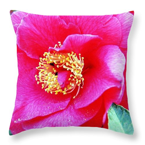 Macro Throw Pillow featuring the photograph Red Flower by Karl Rose