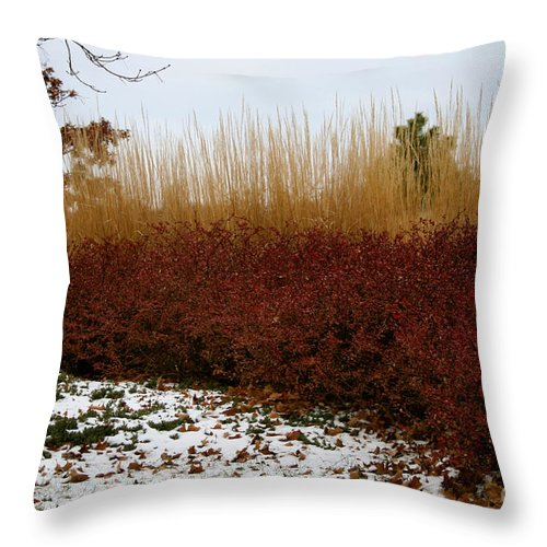 Outdoors Throw Pillow featuring the photograph Red Gold Hedge by Susan Herber
