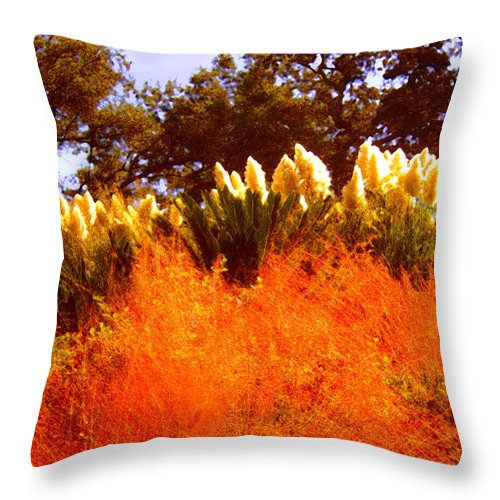 Landscapes Throw Pillow featuring the painting Red Grass by Amy Vangsgard
