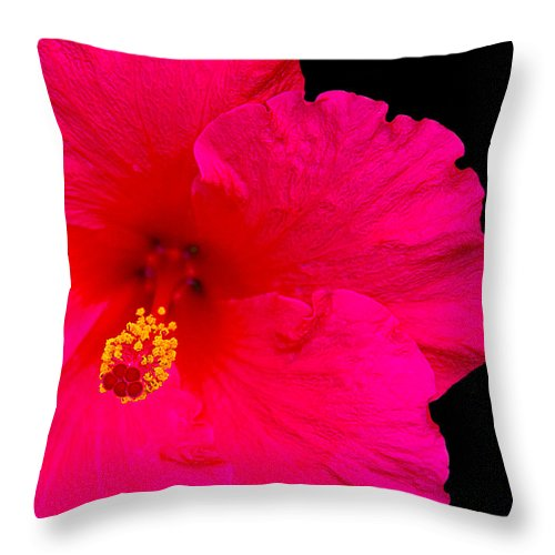 Flower Throw Pillow featuring the photograph Red Hibiscus by Andre Aleksis